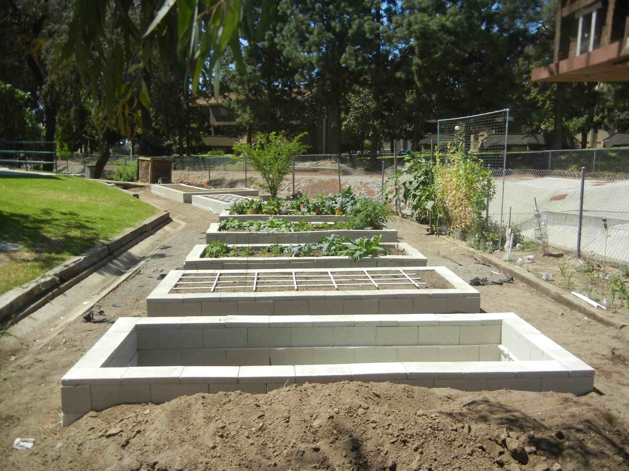 Concrete Raised Garden Beds Easy To Build And Fairly Cement Garden Bed 1542319 Hd Wallpaper Backgrounds Download