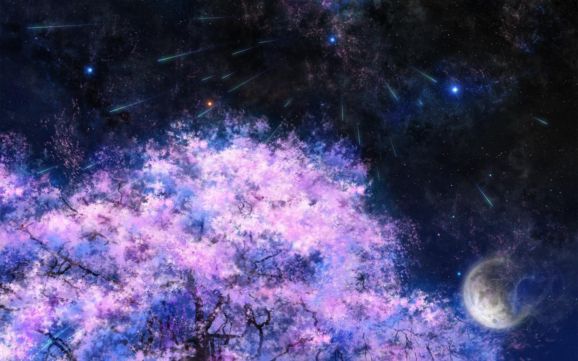 Download This Wallpaper Anime Night Sakura Tree 1560135 Hd