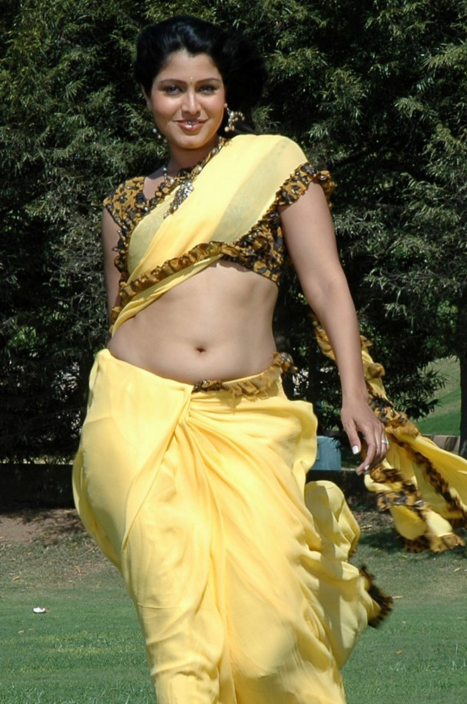 South Actress Wallpaper In Saree - Hot Tamil Aunty Navel , HD Wallpaper & Backgrounds