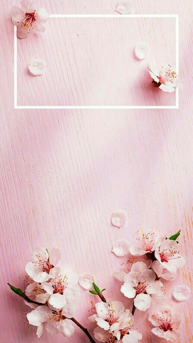 Pin By Suman Rajput On Wallpaper Rose Gold Lock Screen