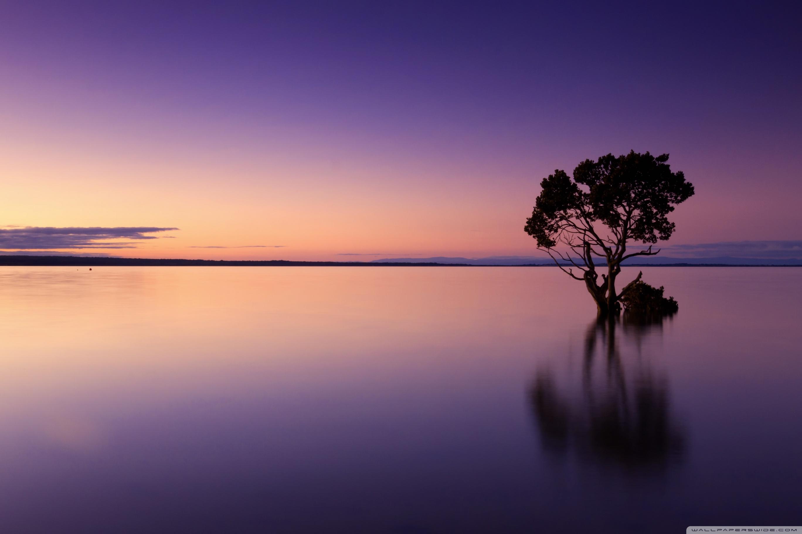 Calm Ocean , HD Wallpaper & Backgrounds