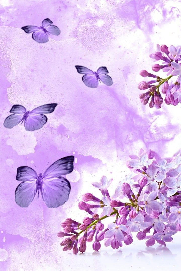 Purple Butterfly Wallpaper Purple Butterfly Wallpaper For Iphone 160148 Hd Wallpaper Backgrounds Download