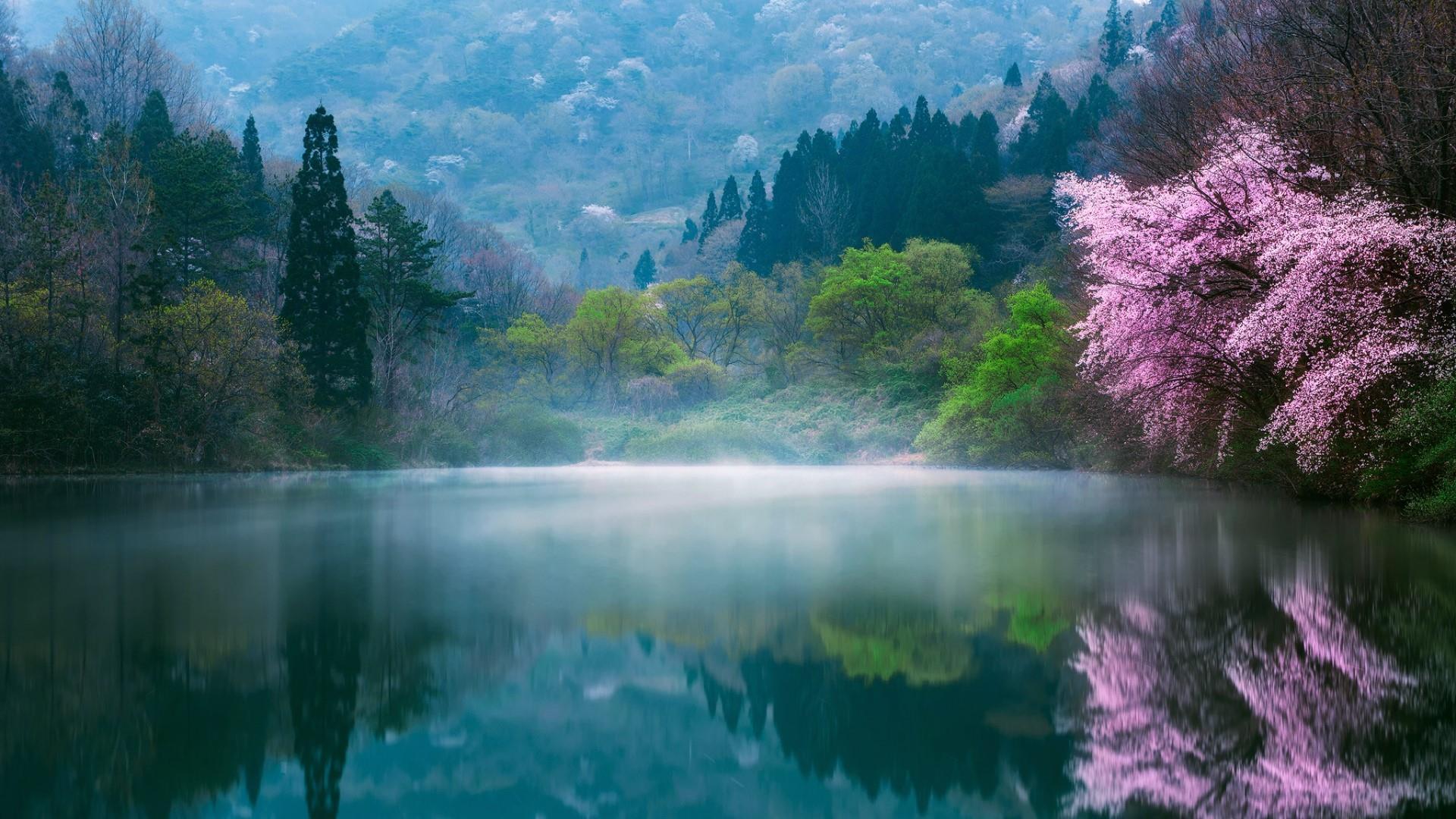 South Lake In South Korea 1615233 Hd Wallpaper