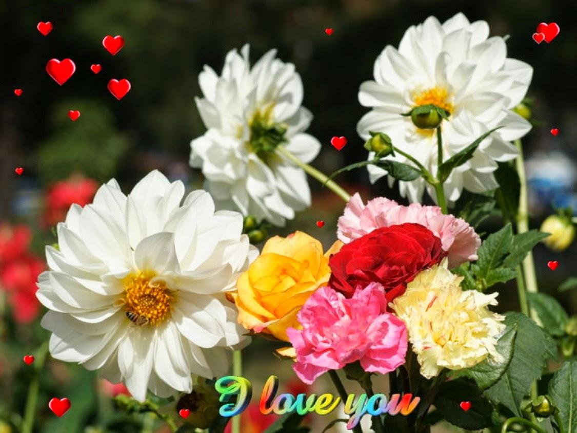 Top Flower Garden Wallpaper Images Hd Photos Gallery - Flower Beautiful , HD Wallpaper & Backgrounds