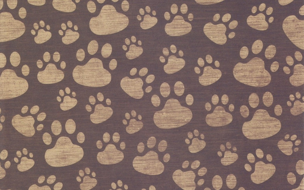 Paw Print Background Surface Pattern - Lion Paw Print Background , HD Wallpaper & Backgrounds