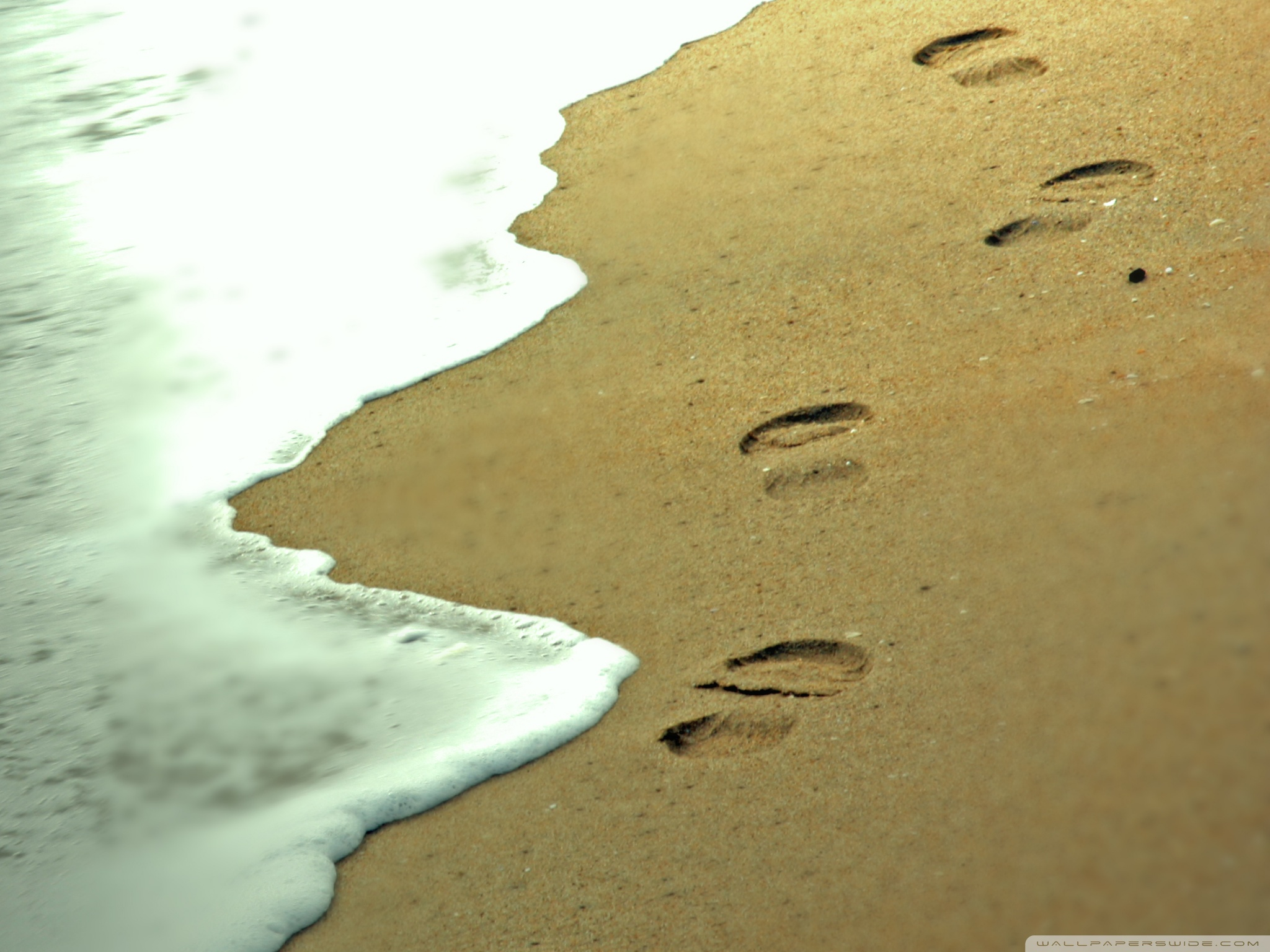 Standard - Footsteps In The Sand X , HD Wallpaper & Backgrounds