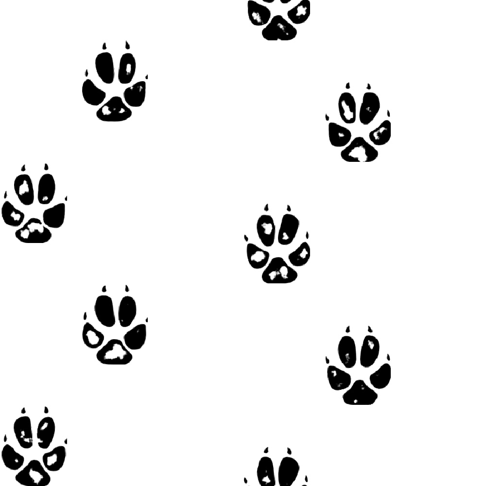 Fox Paw Print Fox Paw Print Png 1631550 Hd Wallpaper Backgrounds Download 500+ vectors, stock photos & psd files. fox paw print fox paw print png