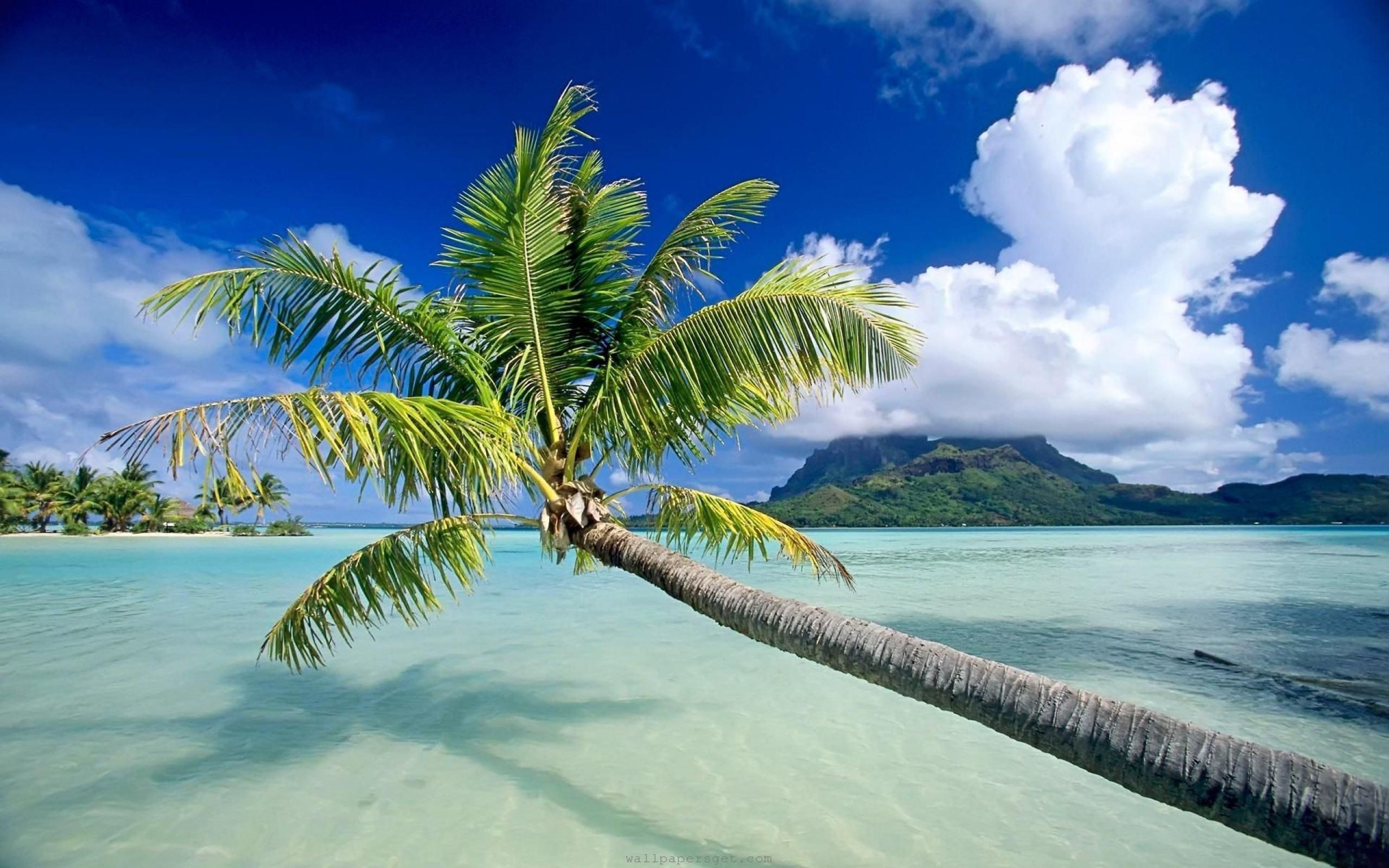 Wallpapers For > Beautiful Ocean Scenery Wallpaper - Beautiful Ocean Scenery , HD Wallpaper & Backgrounds