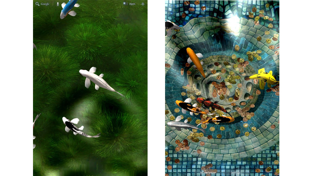 Koi Live Wallpaper © Kittehface Software - Hinh Nen Dong Cho Android , HD Wallpaper & Backgrounds