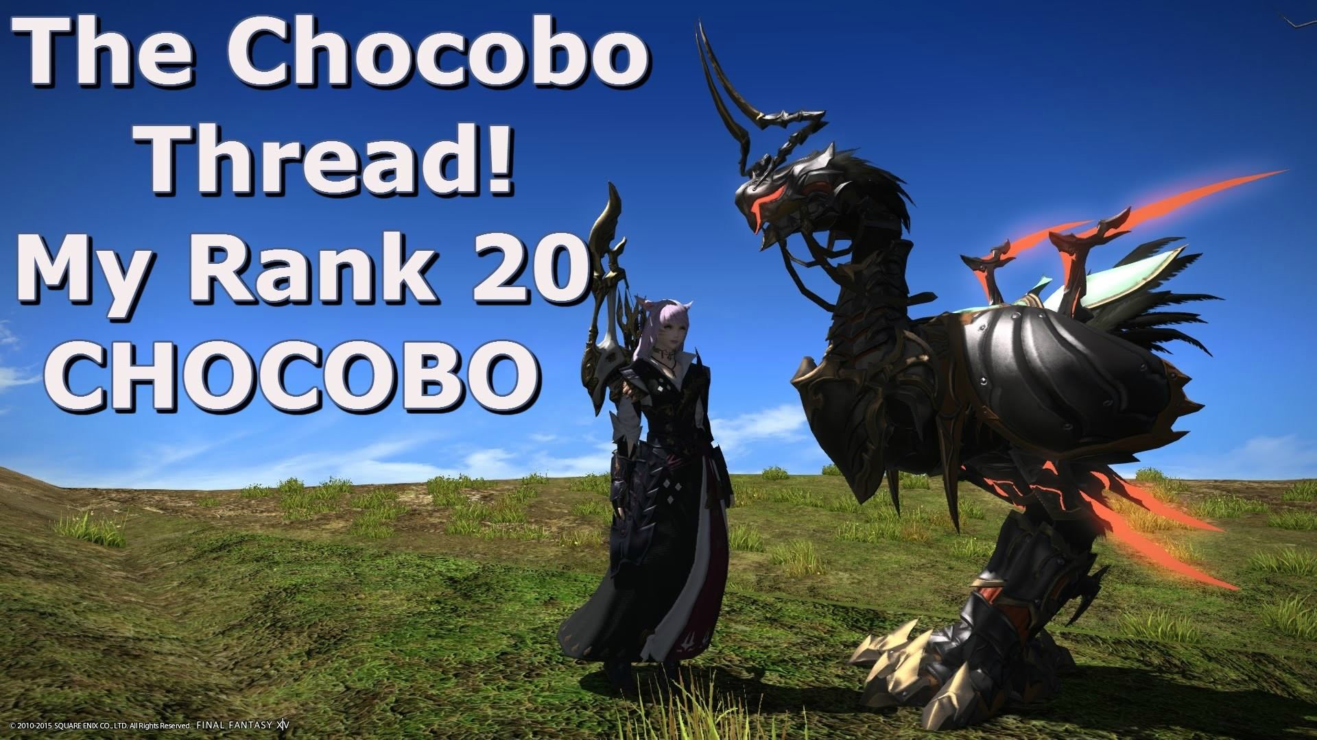Best Chocobo Barding 1688793 Hd Wallpaper Backgrounds