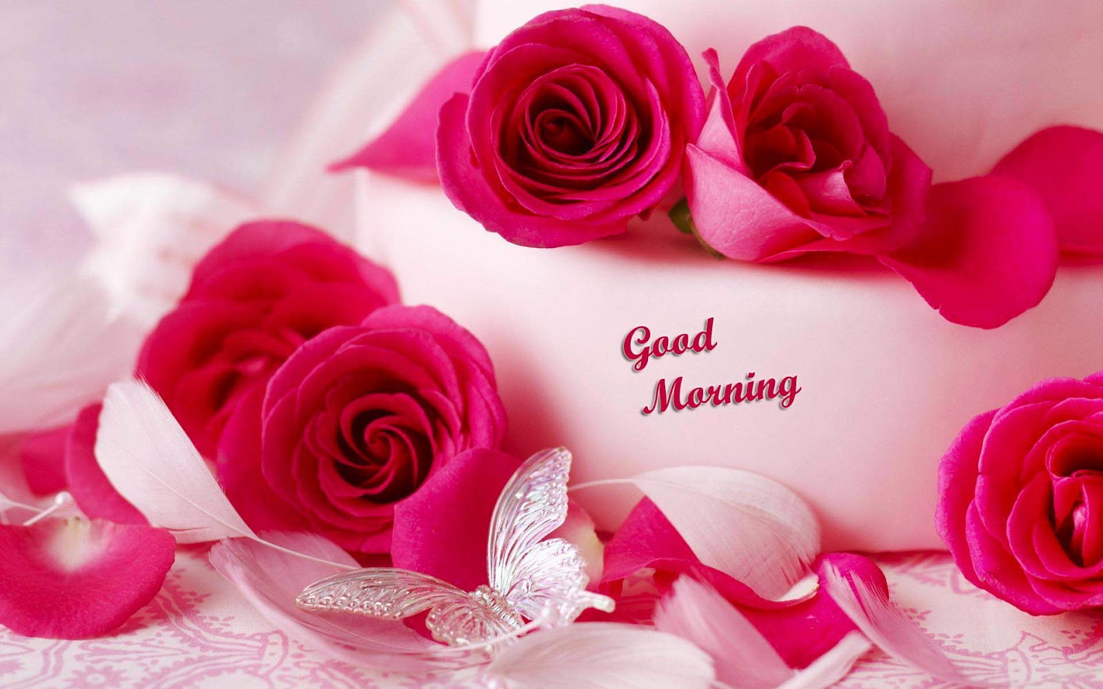 Good Morning Image - Beautiful Romantic Good Morning , HD Wallpaper & Backgrounds