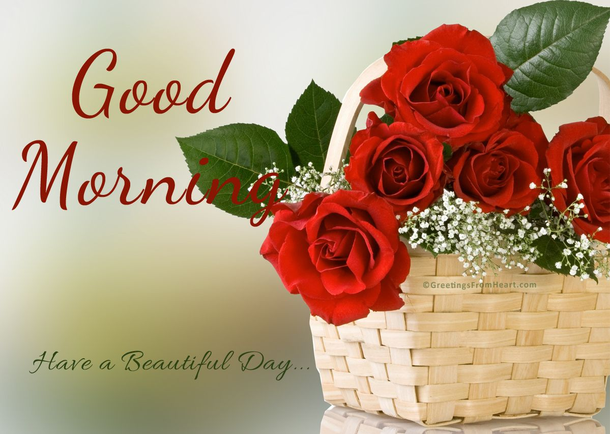Good Morning With Basket Of Red Roses - Rose Good Morning Flowers , HD Wallpaper & Backgrounds