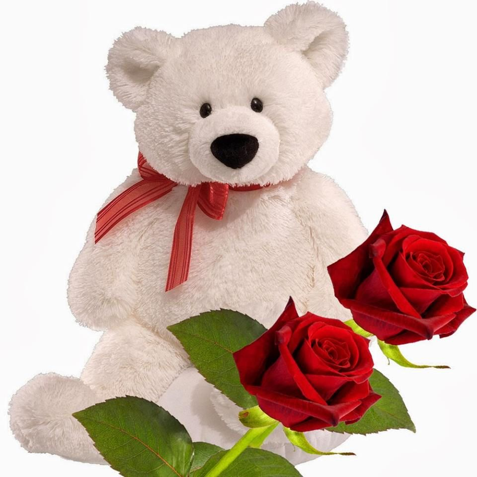 Hd Wallpaper For Pc Good Morning With Red Rose Good Teddy Bear