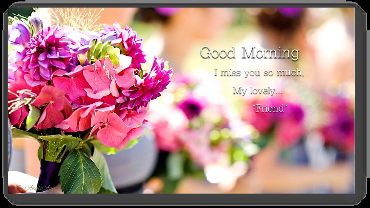 Good Morning & Good Night Beautiful Flower - Flower Good Morning And Good Night , HD Wallpaper & Backgrounds