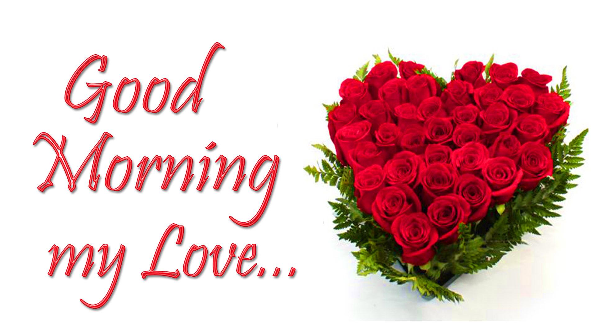 Flower Good Morning Images Wallpaper Pics Download Good Morning