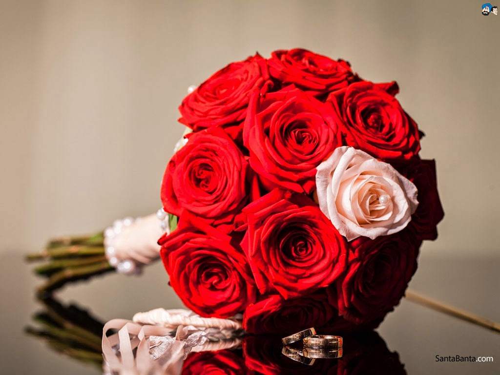 Good Morning Pink Rose Hd Images - Good Morning Rose Full Hd , HD Wallpaper & Backgrounds