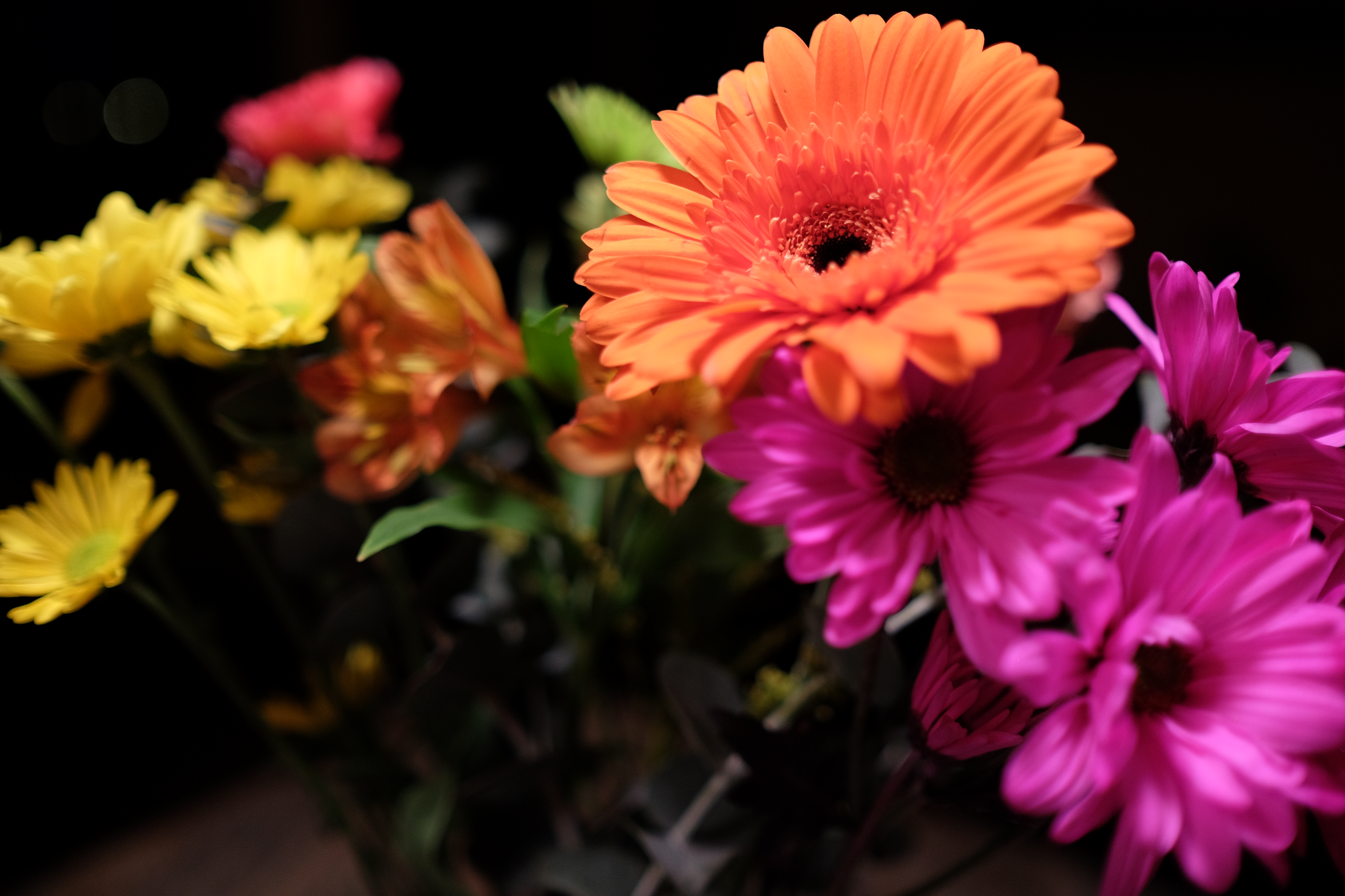 4 @ 23 Mm, 1/105, Iso 400, No Flash, Handheld - 400 Pixels Wide And 150 Pixels Tall Flowers Pic , HD Wallpaper & Backgrounds