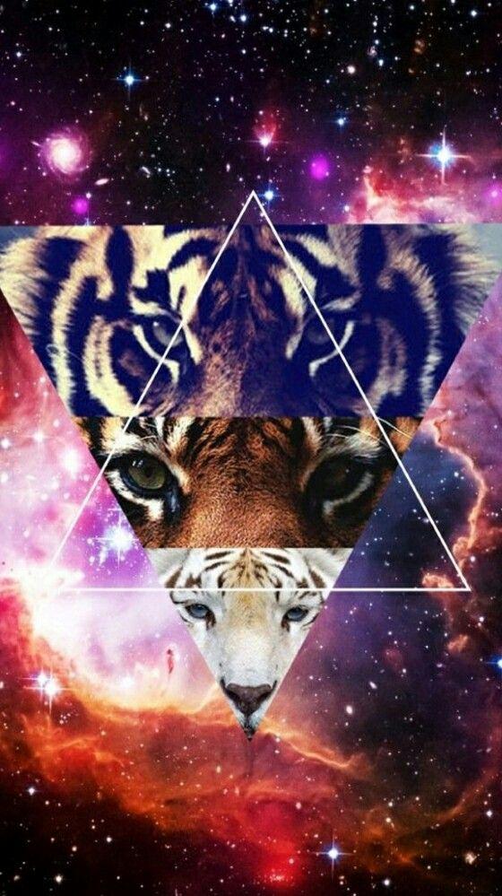 Galaxy Wallpaper Tumblr Triangle 472317 Tiger Galaxy 1733295 Hd Wallpaper Backgrounds Download