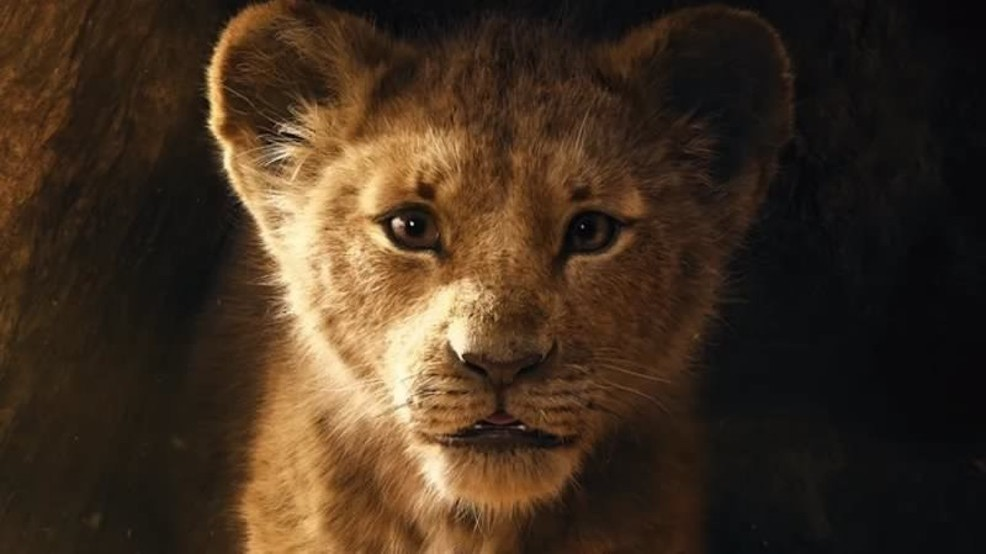 Simba Lion King Live Action , HD Wallpaper & Backgrounds