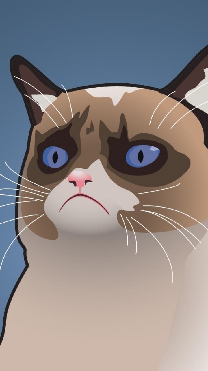 Grumpy Cat Wallpaper For Phone 720x1280, - Grumpy Cat Wallpaper Iphone , HD Wallpaper & Backgrounds