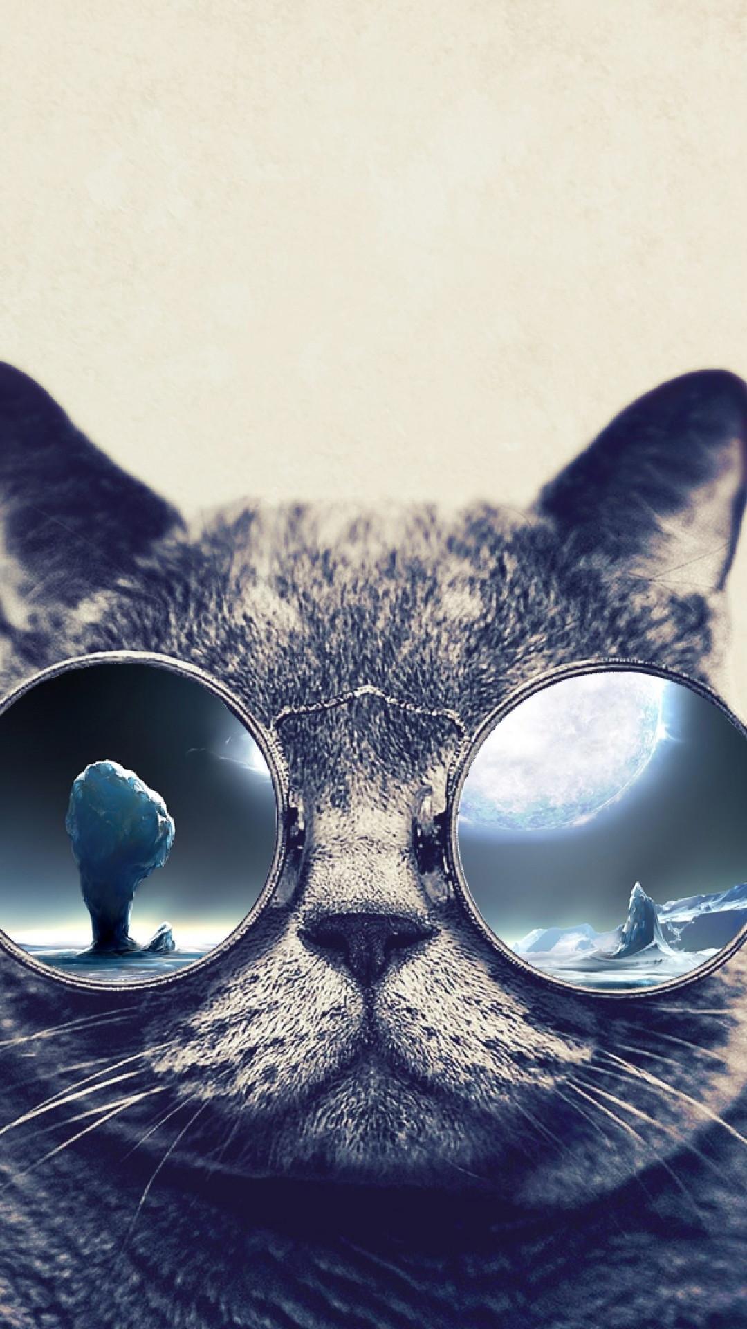 1175798 Download Free Grumpy Cat Iphone Wallpaper - Cool Cat Wallpaper For Iphone , HD Wallpaper & Backgrounds