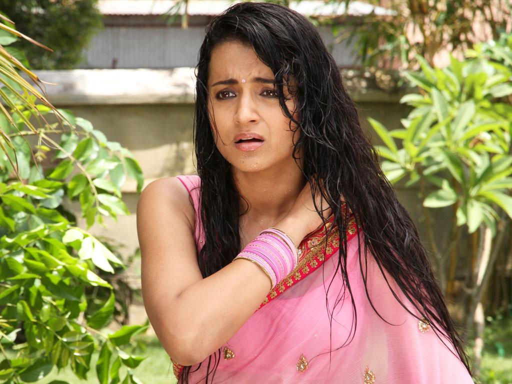 Trisha Krishnan - South Indian Actress In Saree Hot , HD Wallpaper & Backgrounds