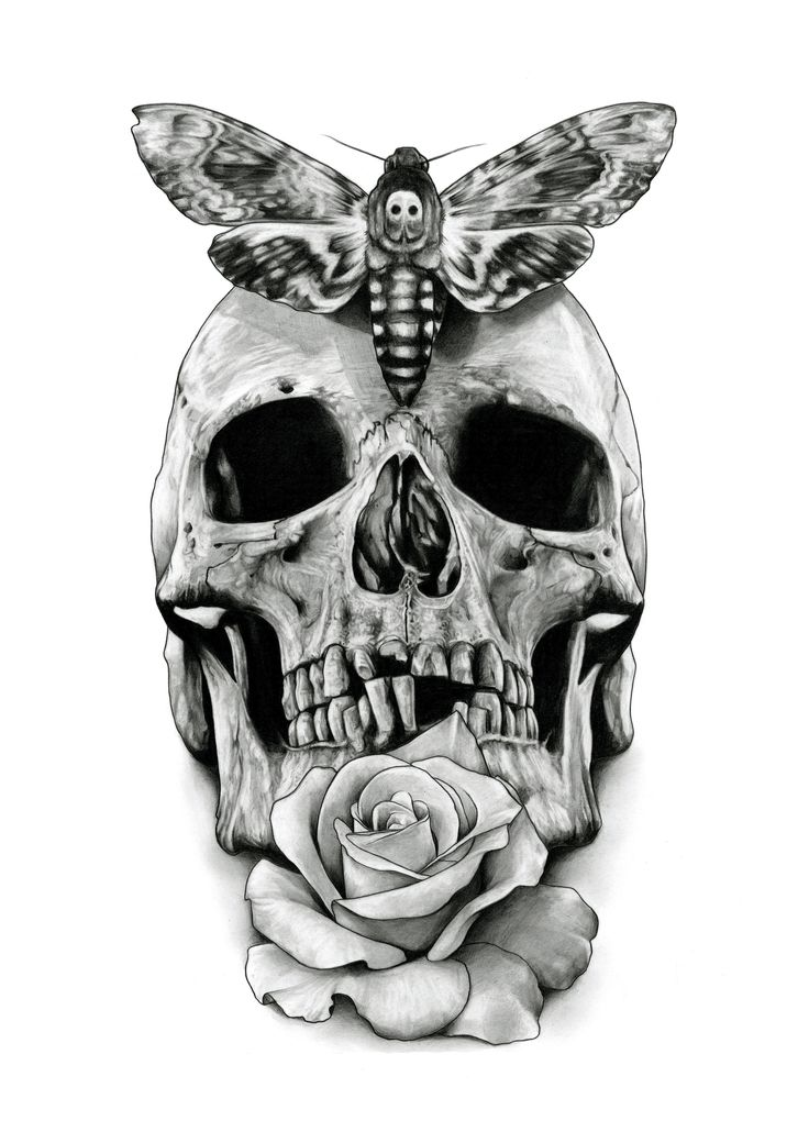 Skull Tattoo Clipart Paper Skull And Moth Tattoo Design
