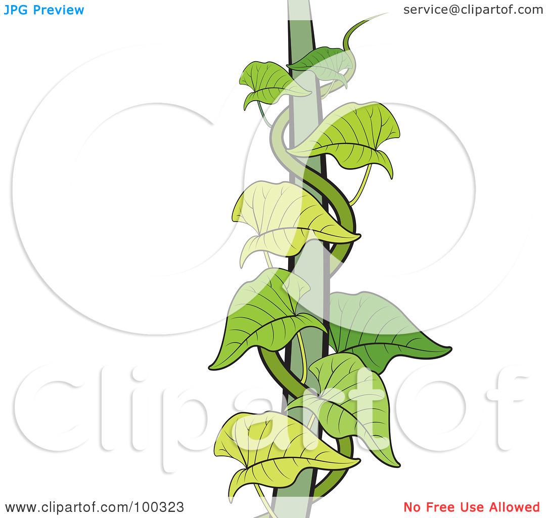 Make Money Clipart Money Tree Money Plant Images Clipart 1816144 Hd Wallpaper Backgrounds Download
