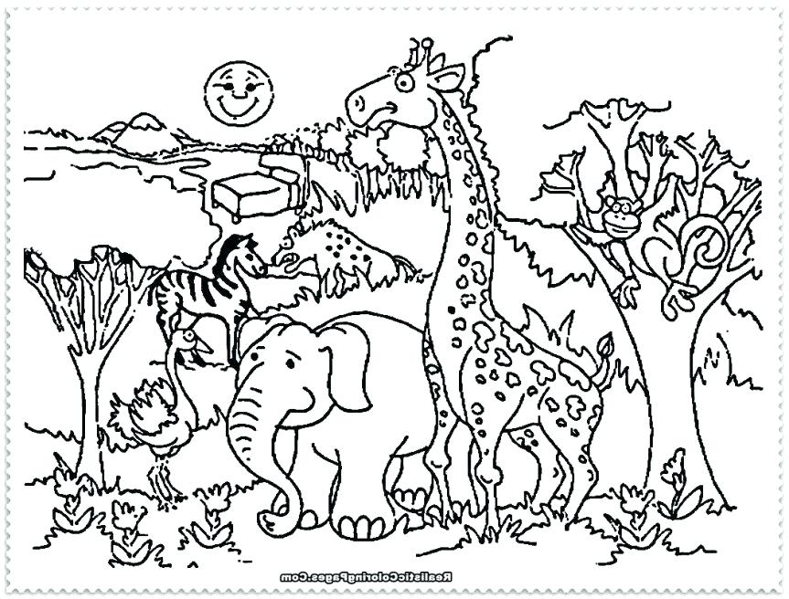 Garchomp Coloring Pages Associated Images For Coloring - Animals In The Zoo Coloring Pages , HD Wallpaper & Backgrounds