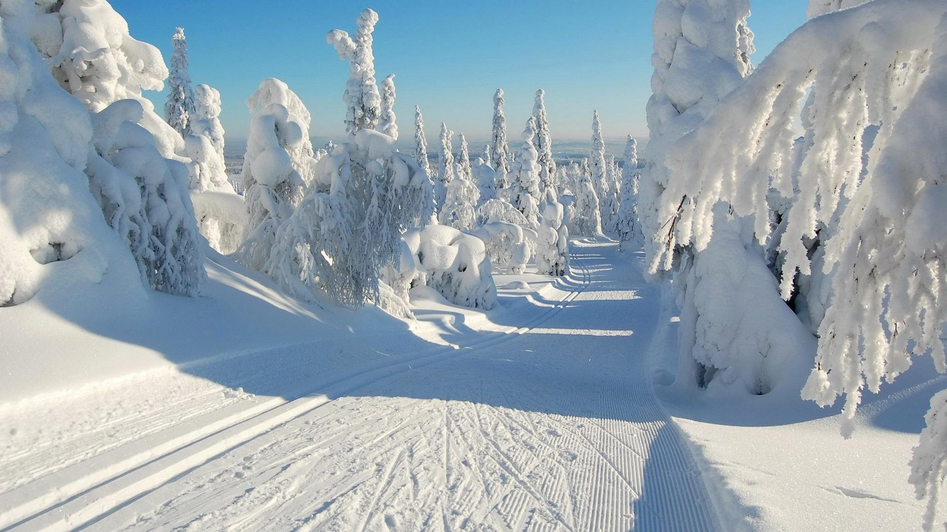 Download Original Tapeta Na Pulpit Sloneczna Zima 1823559