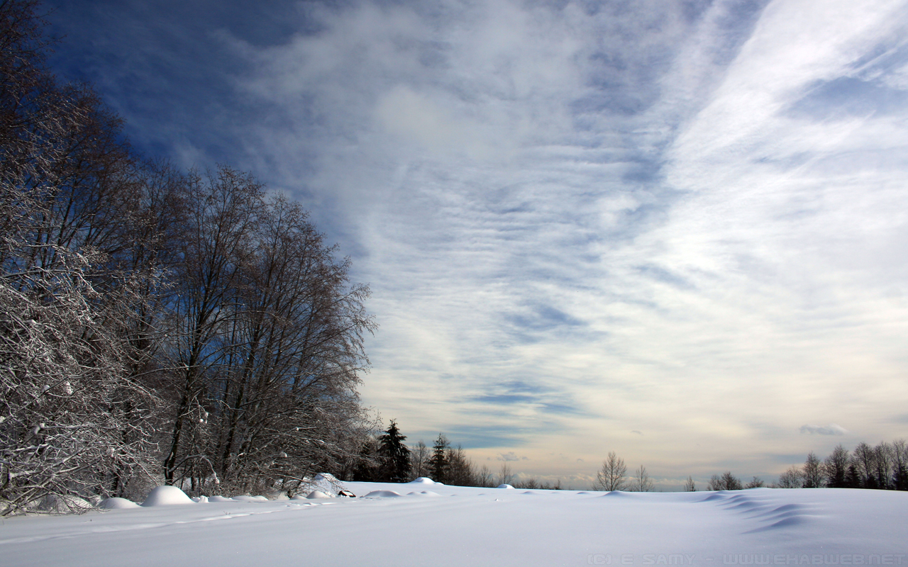 Snowy Landscape , HD Wallpaper & Backgrounds