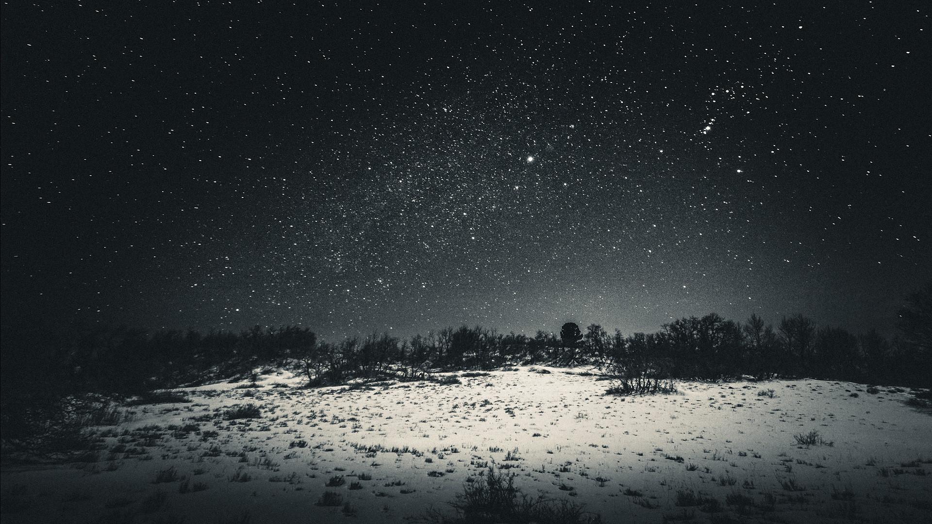 Night Sky Dark Star Lights Tree Nature Iphone 8 Wallpaper - Dark Snow , HD Wallpaper & Backgrounds