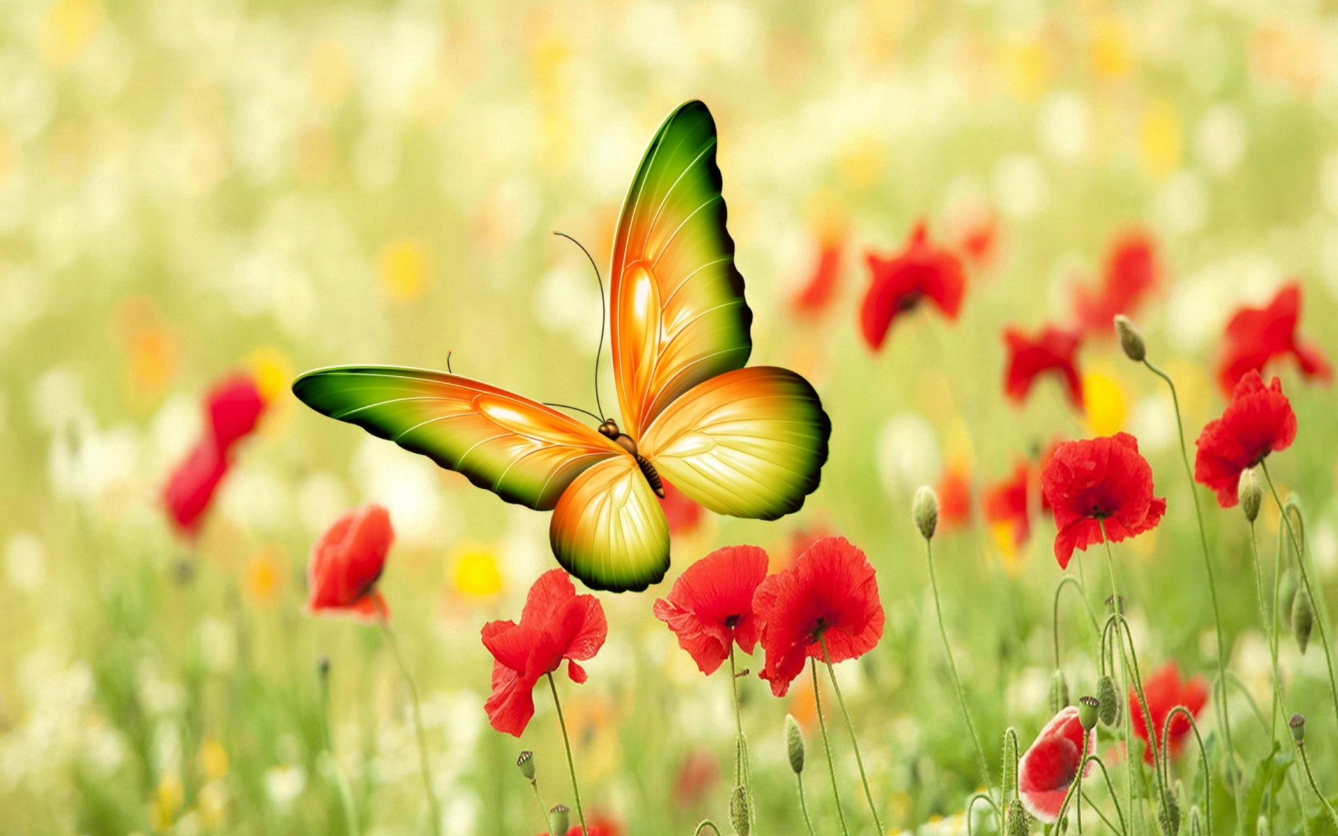 0 Butterfly Wallpaper For Computer Butterfly Wallpaper - Good Morning Poetry Sms , HD Wallpaper & Backgrounds