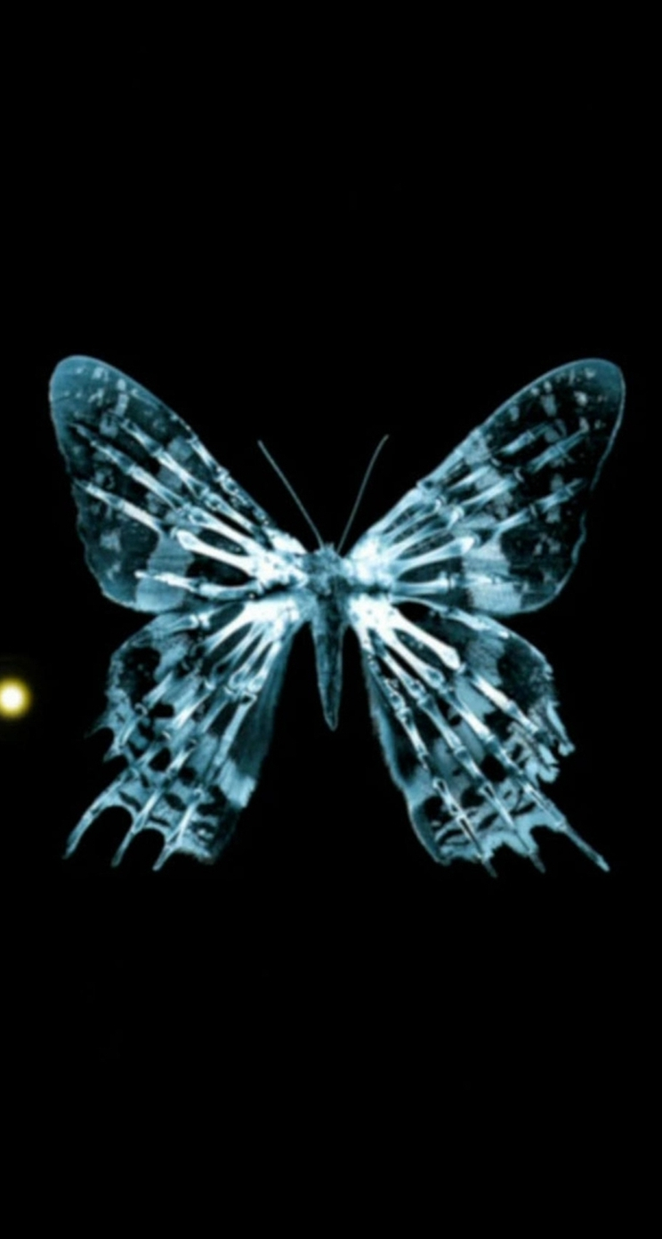 Butterfly Iphone 5s Wallpapers Iphone Wallpapers Ipad Butterfly Effect 1853047 Hd Wallpaper Backgrounds Download