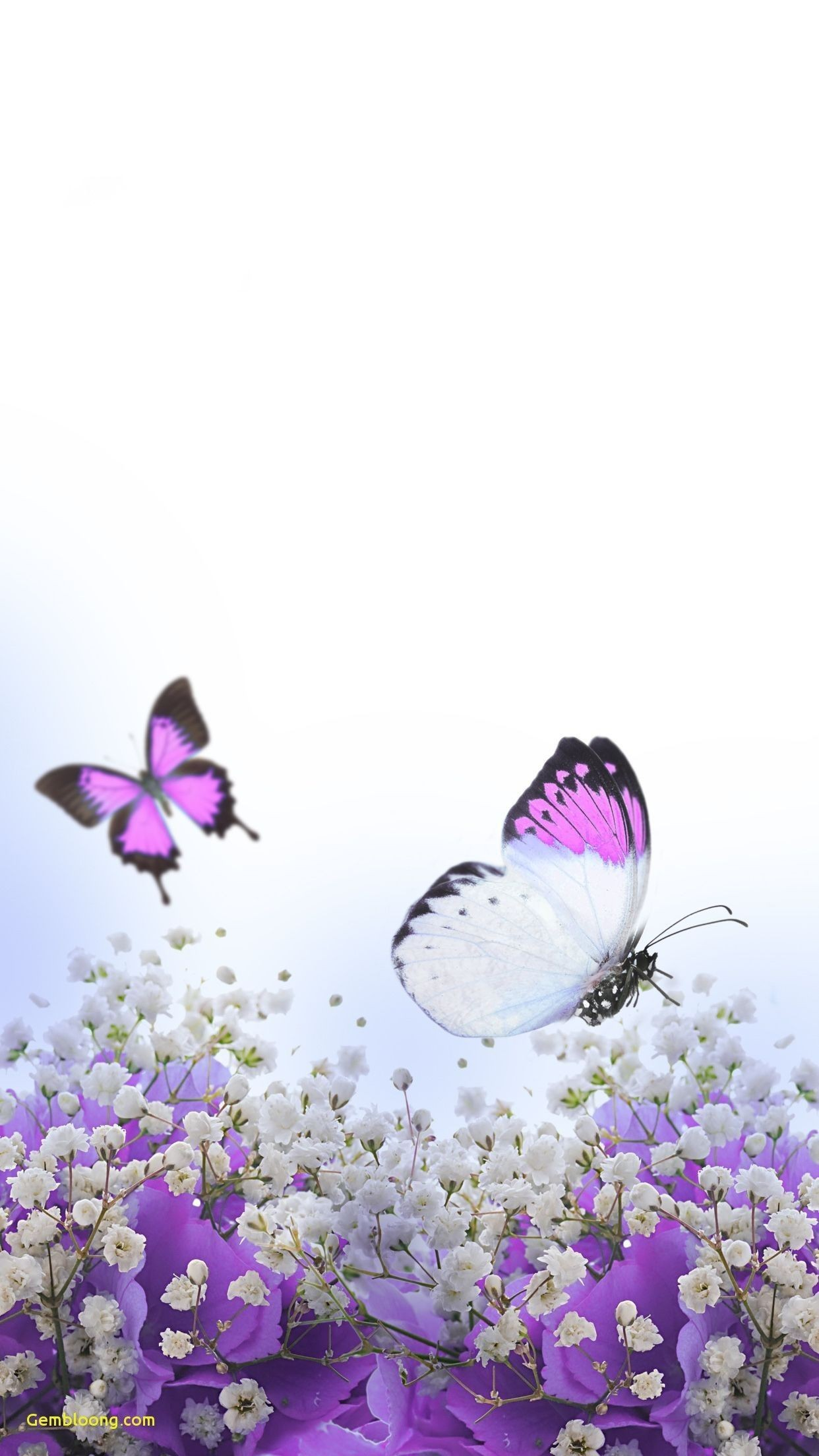 Free Butterfly Backgrounds For Android Lovely Inspirational - Butterfly And Flowers Violet , HD Wallpaper & Backgrounds
