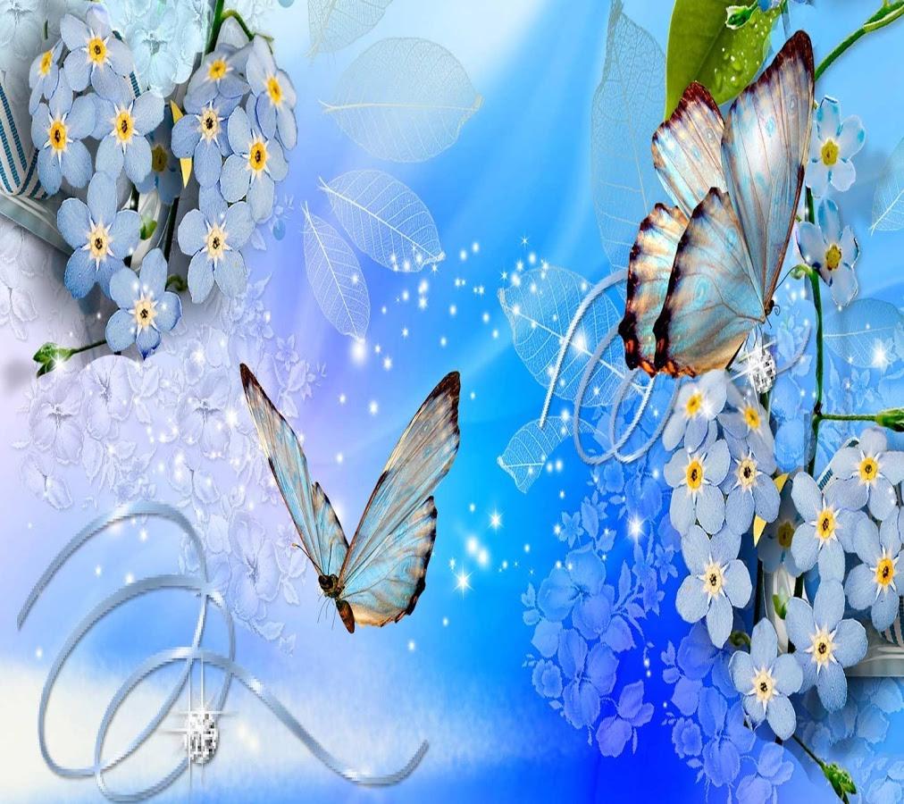Butterfly Wallpaper For Desktop New Image Butterfly Blue
