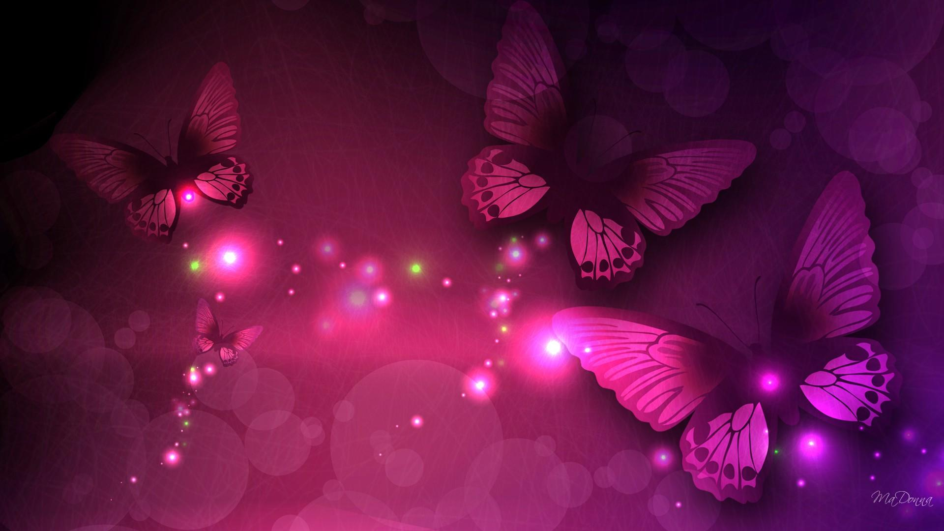 Black Butterfly Wallpaper 1854229 Hd Wallpaper Backgrounds Download