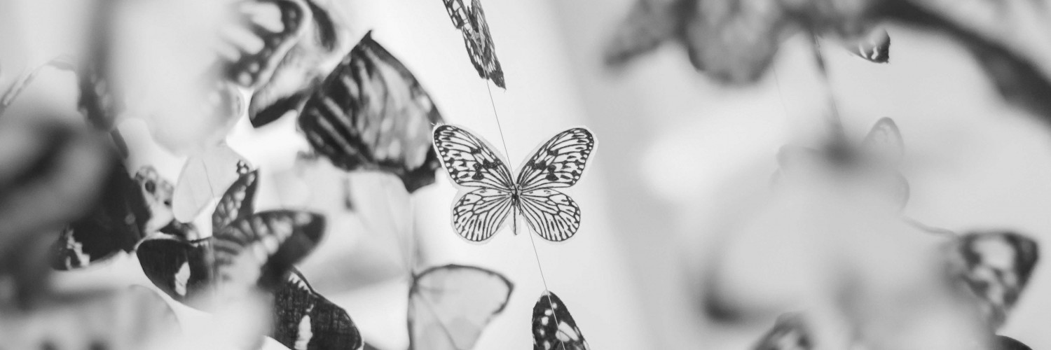 Colorful Beautiful Black And White Butterfly Wallpaper - Butterflies In Black And White , HD Wallpaper & Backgrounds