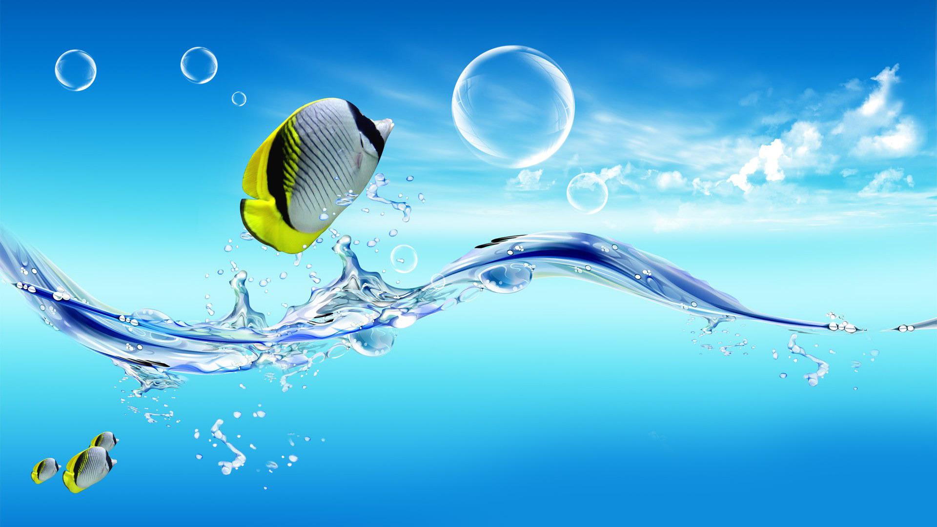 Water Fish Wallpaper Hd 4k Wallpaper For Pc Windows 10 1858424 Hd Wallpaper Backgrounds Download