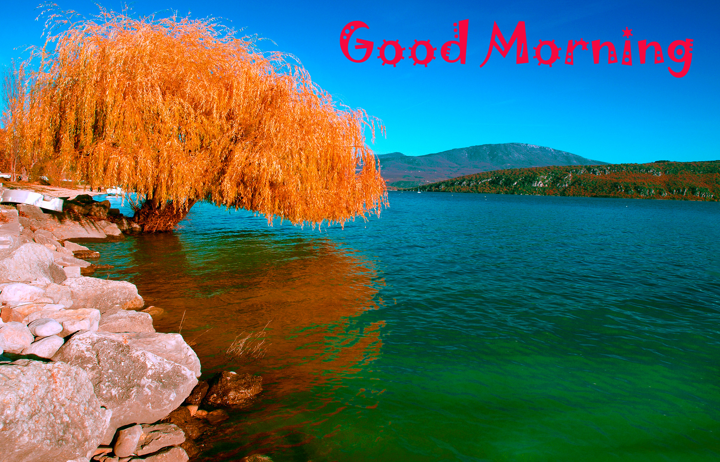 Good Morning Images Wallpaper Pics Download With Beautiful Beautiful Nature Good Morning 1861248 Hd Wallpaper Backgrounds Download