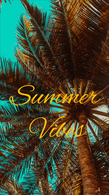 Wallpaper Summer Vibes Palm Mood Summer Vibes Wallpaper
