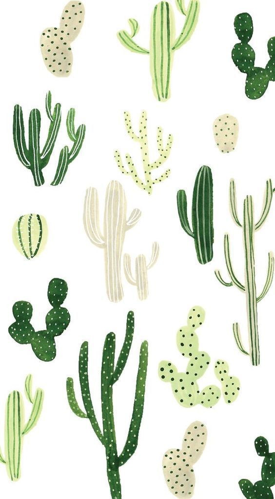 Simple And Beginner Friendly Watercolor Ideas Background Cactus 1863449 Hd Wallpaper Backgrounds Download