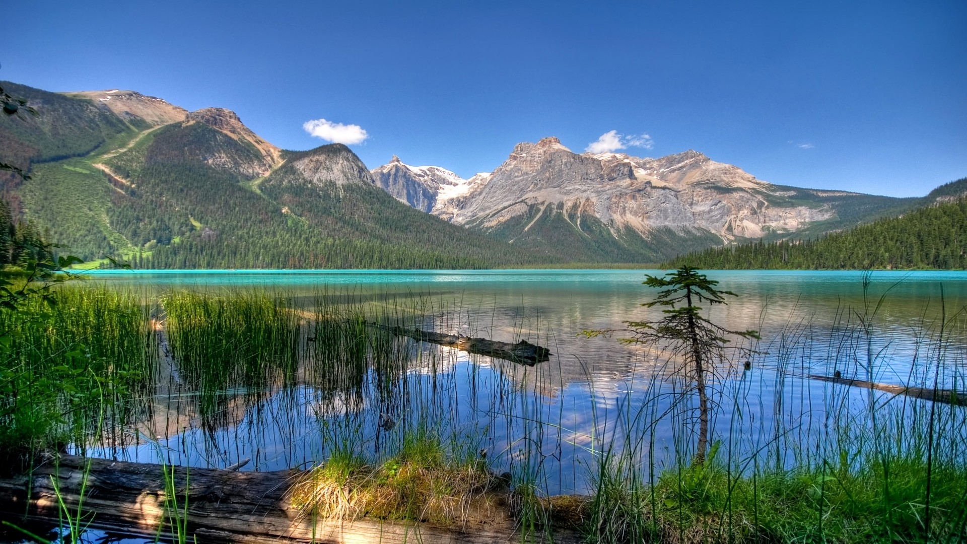 - - Emerald Lake , HD Wallpaper & Backgrounds