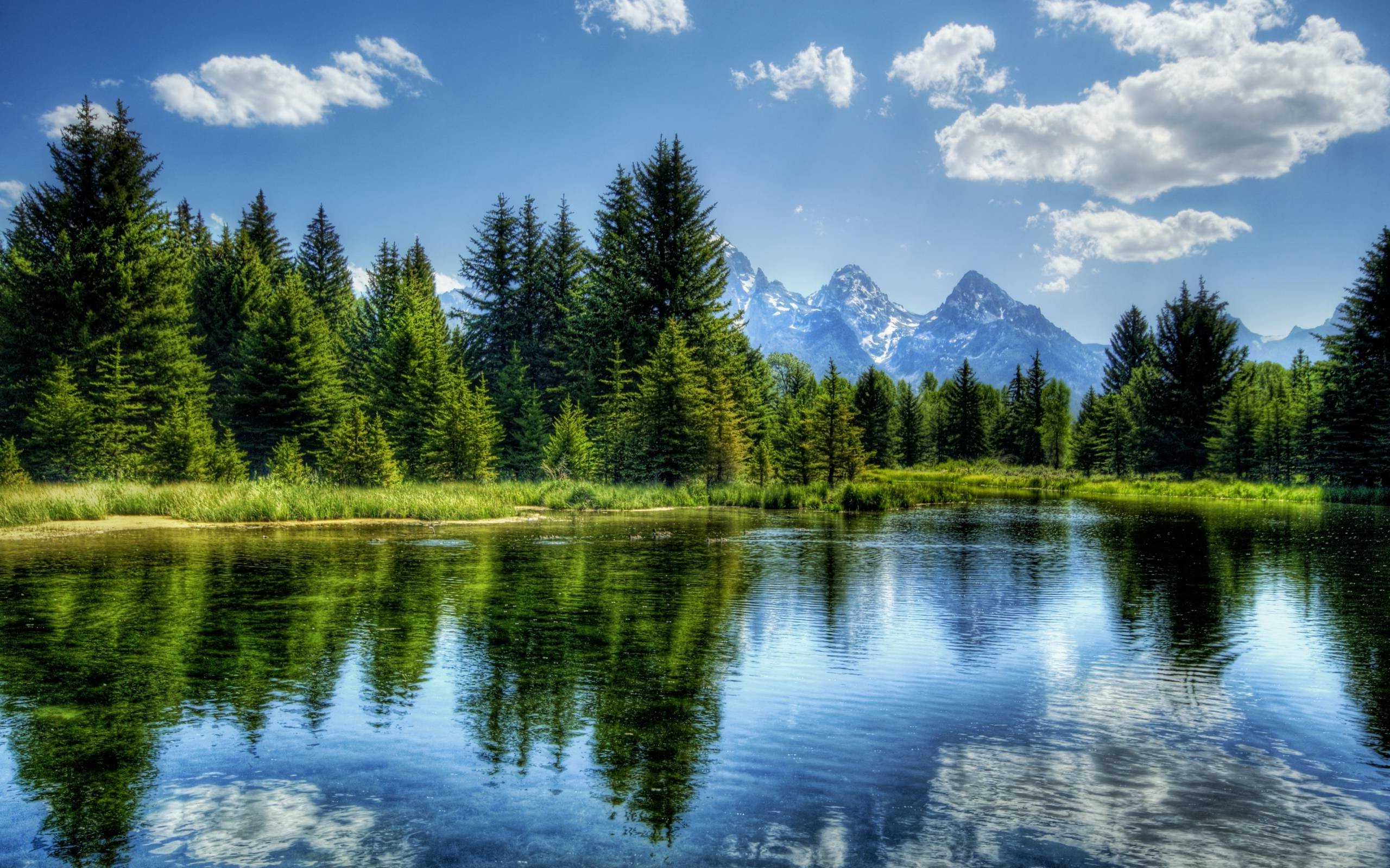 Nature, Hdr, River, Trees, Mountain, Landscape Wallpapers - Trees And Mountain Landscape , HD Wallpaper & Backgrounds
