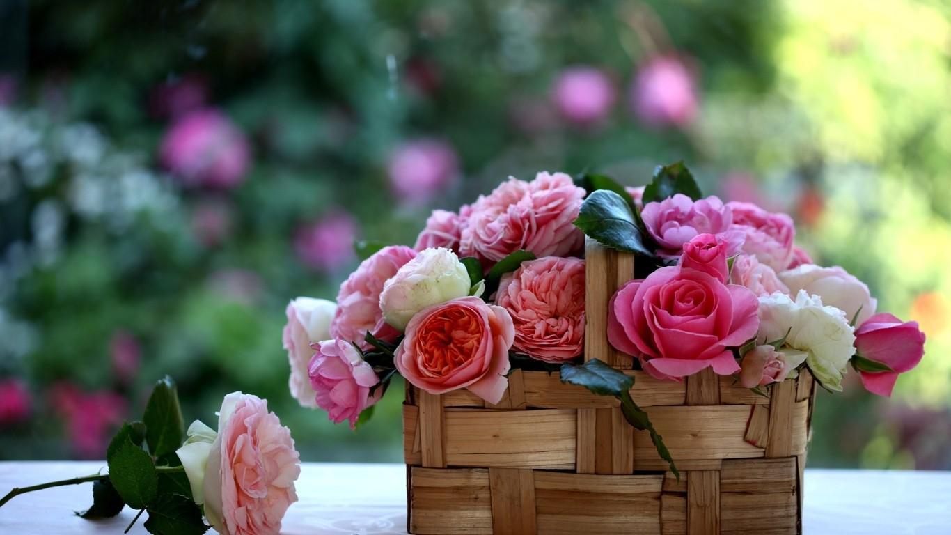 - Hd - Basket Full Of Flowers , HD Wallpaper & Backgrounds