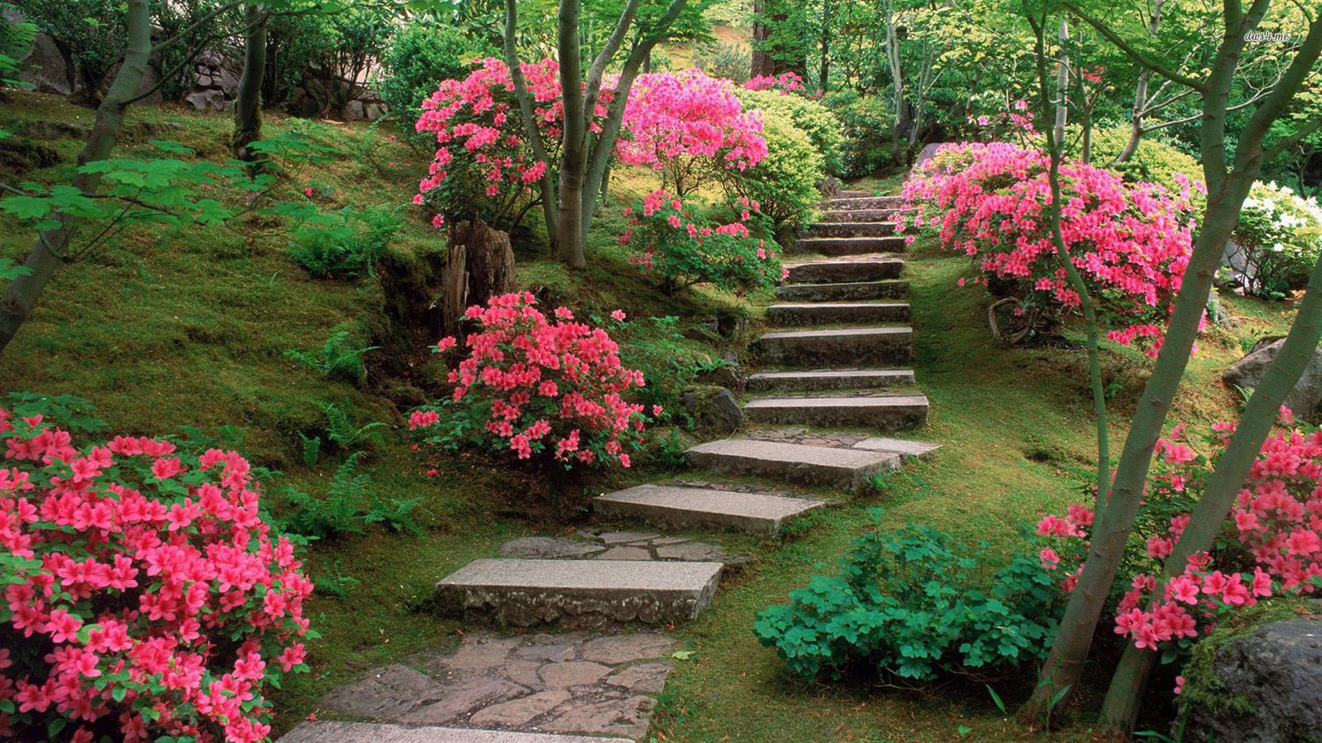 Spring Japanese Garden Picture On Wallpaper 1080p Hd Hinh