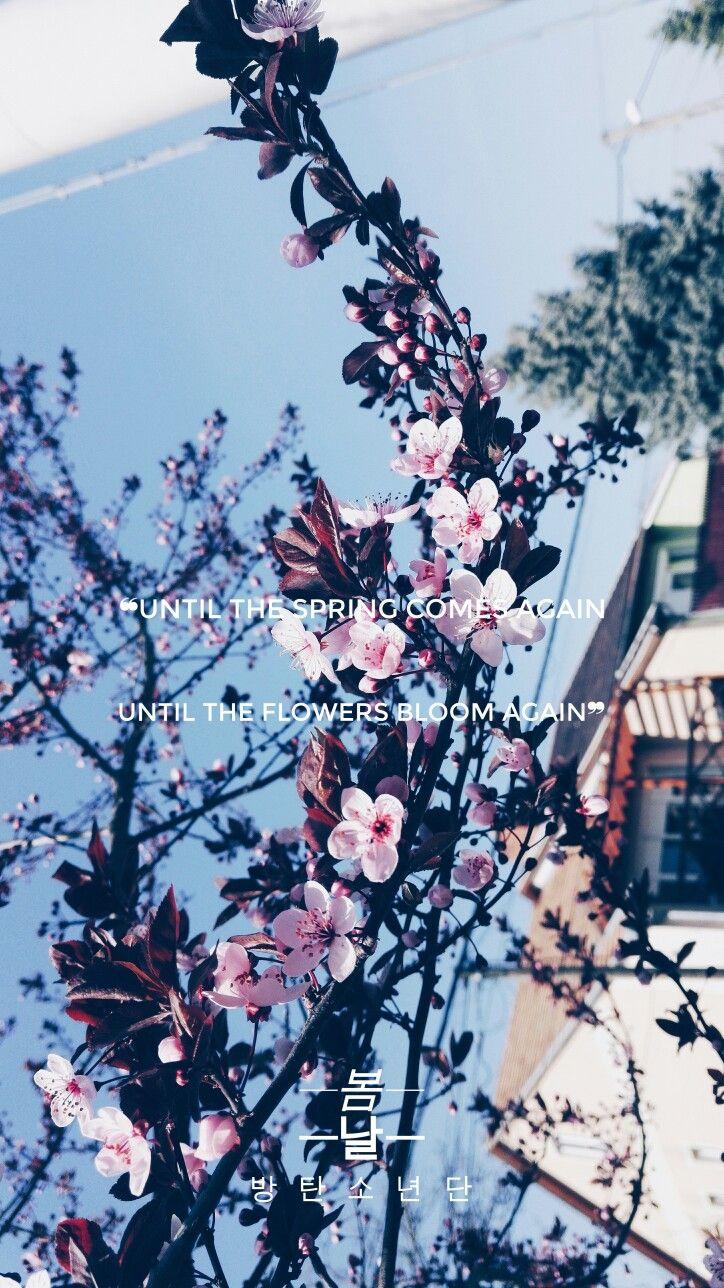 Laptop Bts Spring Day Wallpaper Desktop Hd Logo Keren