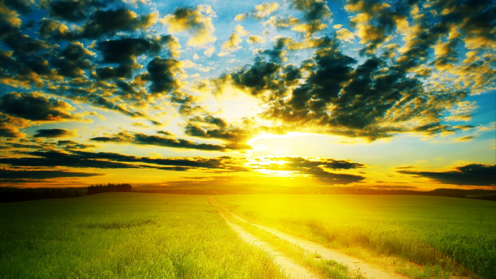 Beautiful Morning , HD Wallpaper & Backgrounds