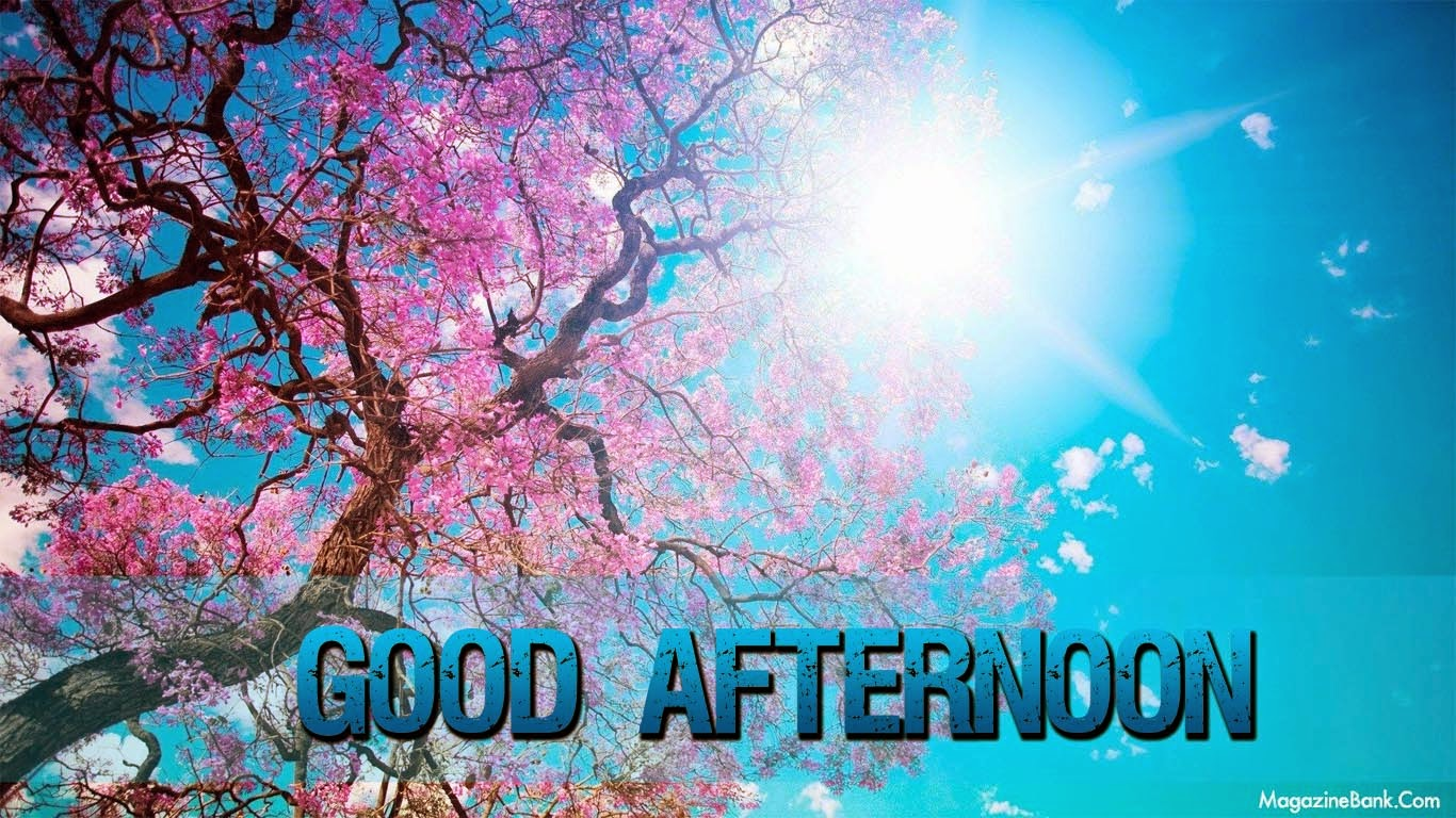 Good Afternoon Images With Quotes In Hindi Funny Gif - Cherry Blossom Tree Sun , HD Wallpaper & Backgrounds