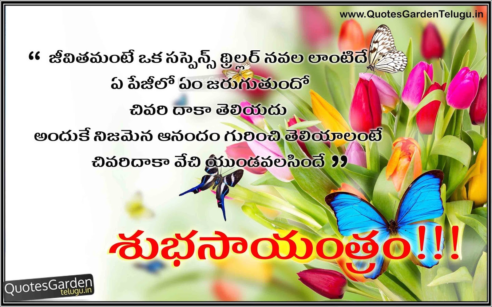 best thoughts n telugu good evening quotes for friends